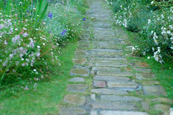 Valhalla gardening services in Devon